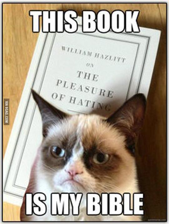 القطة الغاضبة